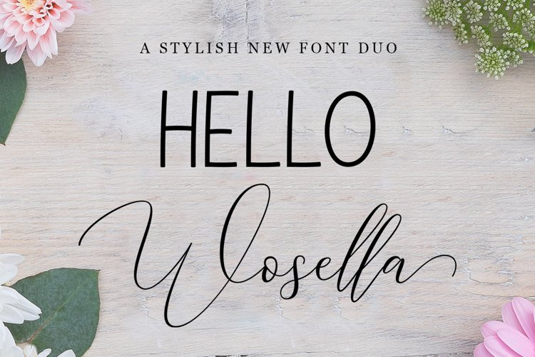 HELLO Wosella Duo example image 1