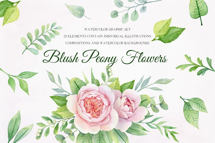 Watercolor Blush Peony flower set. Floral clipart. example image 1