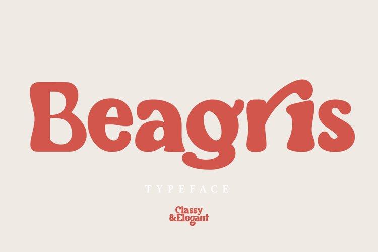 Beagris - Typeface example image 1