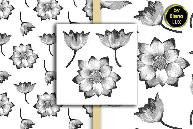 Hatching Lotus set and 2 Seamless patterns