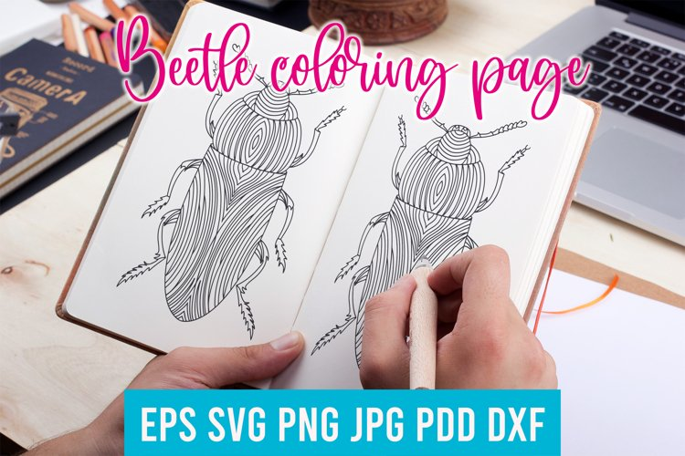 Beetle coloring page. Beetle SVG. Insect coloring page