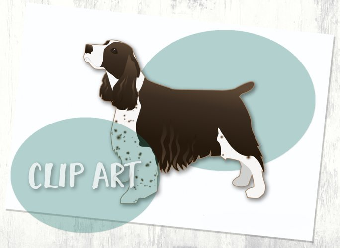 Liver Springer Spaniel Dog Breed Clip Art example image 1