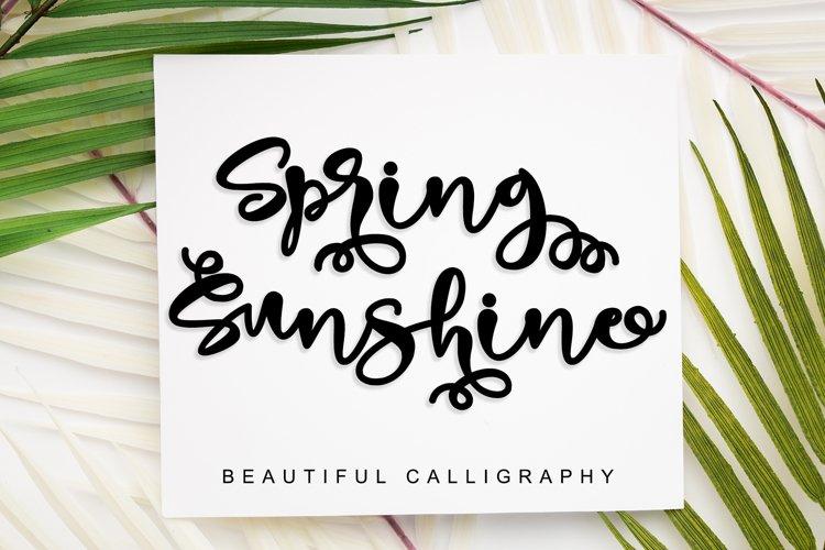 Spring Sunshine example image 1