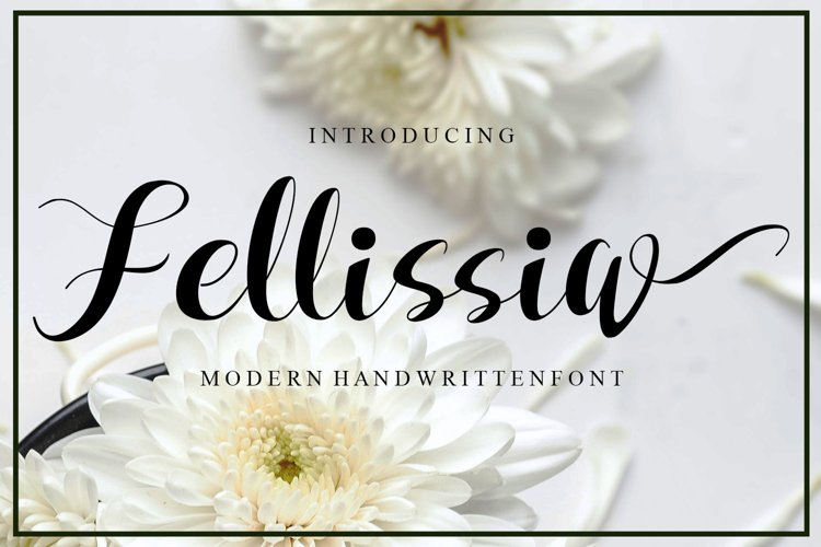 Fellissia example image 1