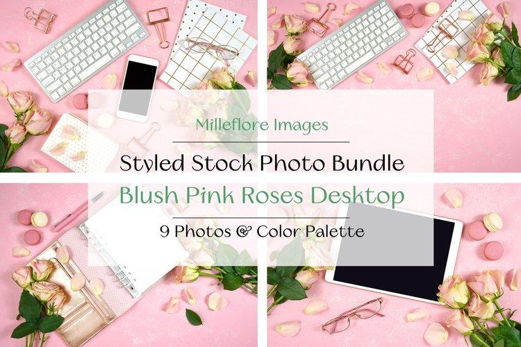Blush Pink Roses Theme Desktop Mockups Styled Photos Bundle