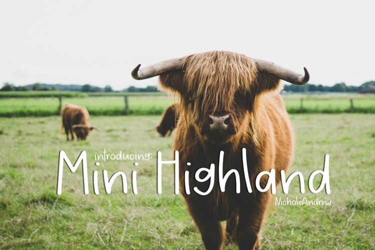 Mini Highland - A Handwritten Font