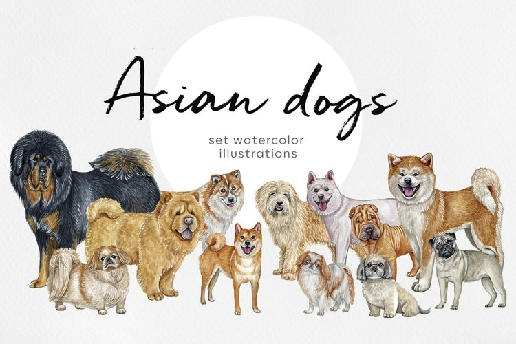 Asian dog breeds. Watercolor 12 dogs illustrations.