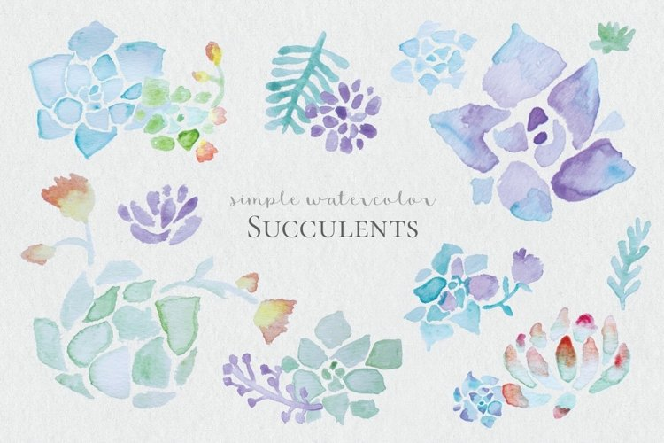 Watercolor Succulents example image 1