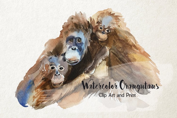 Mother and Babies Orangutans - Watercolor Print and Clip Art example image 1