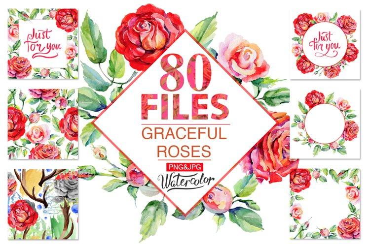 Roses PNG watercolor flower set