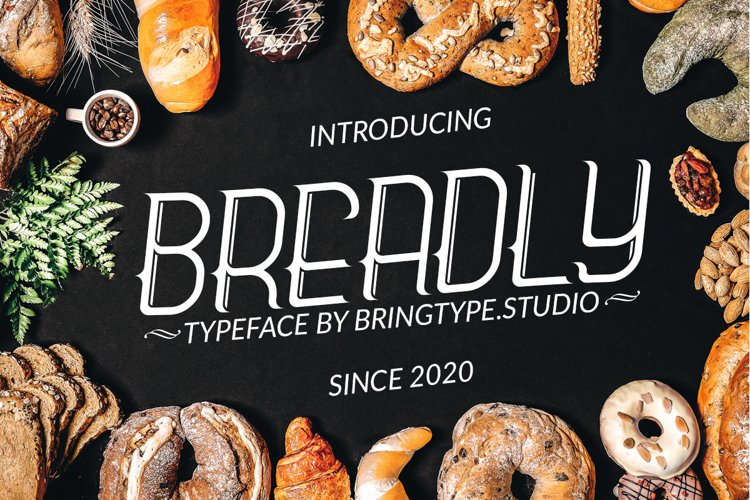 Breadly Typeface Font example image 1