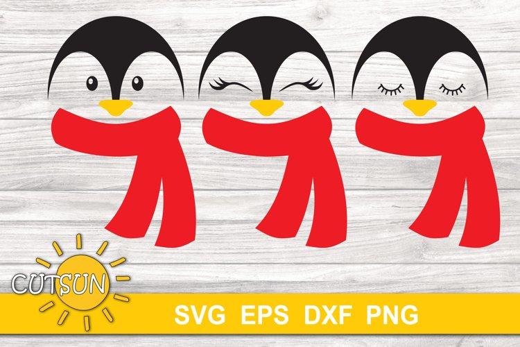 Baby Penguin SVG   Cute penguin SVG