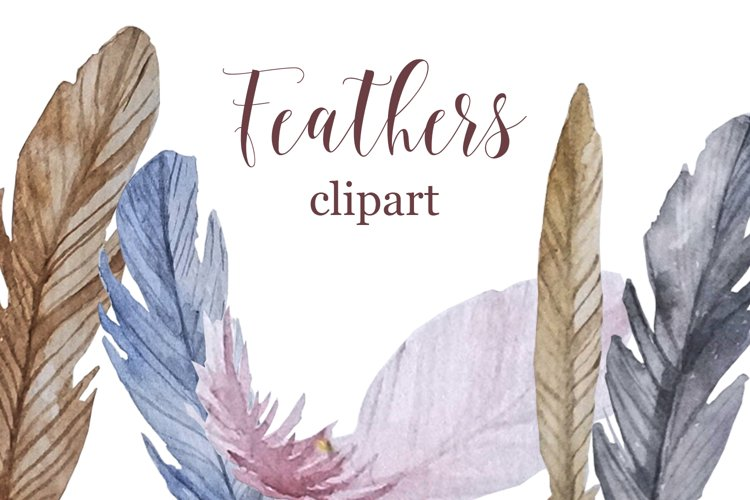 Watercolor feathers clipart example image 1