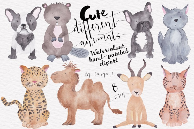 Cute Different Animals Watercolor Hand Painted Clipart example image 1