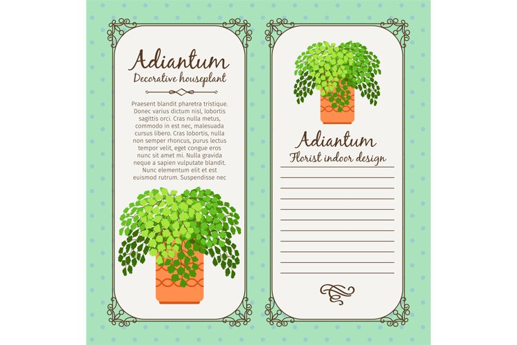 Vintage label with adiantum plant example image 1
