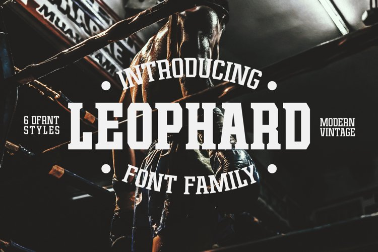 Leophard Font Family example image 1