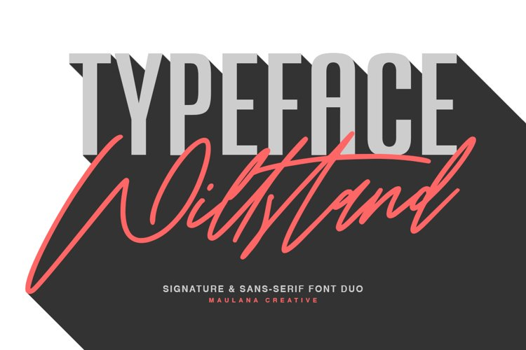 Willstand Font Duo Signature Sans Typeface example image 1