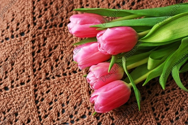 Pink tulips on a knitted brown surface. example image 1