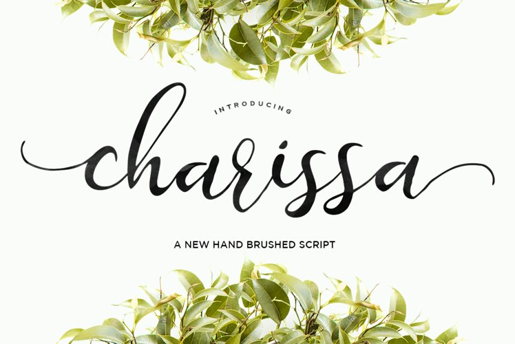 Charissa Script example image 1