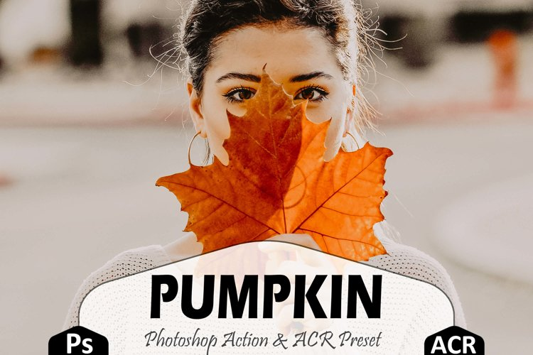Pumpkin Photoshop Actions And ACR Presets, Fall preset example image 1