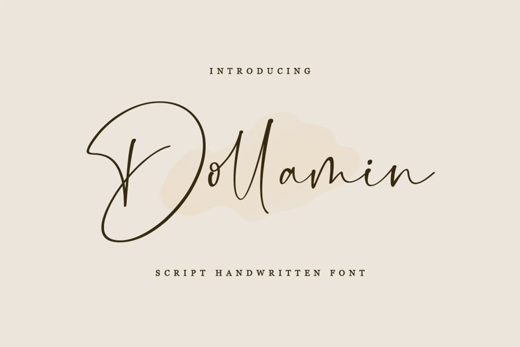 Dollamin - Script Handwritten Font example image 1