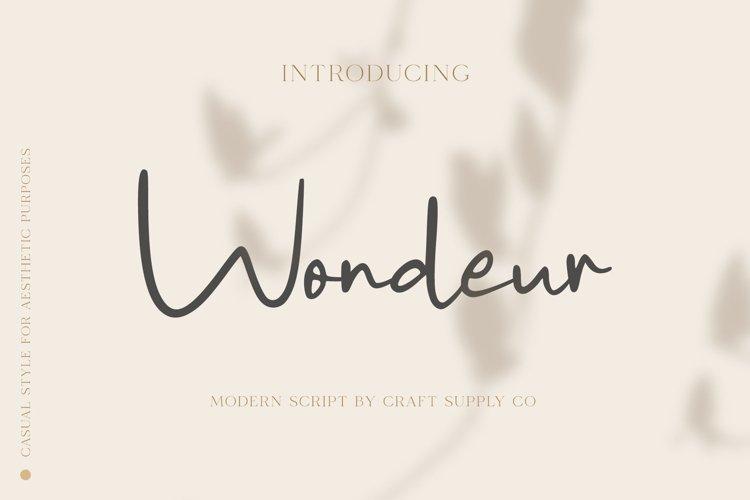 Wondeur - Modern Script Font example image 1