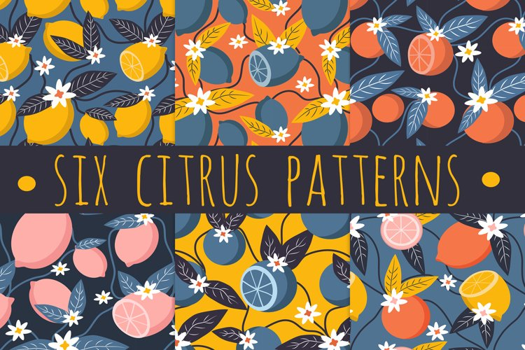 six cute seamless vector summer patterns with citrus example image 1