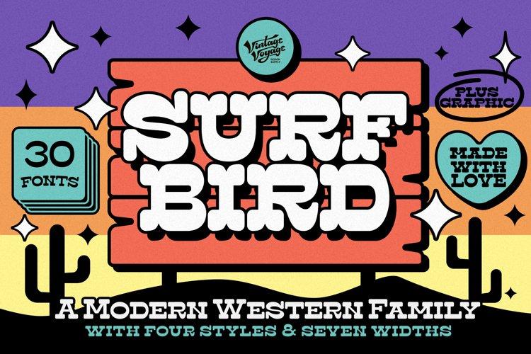 The Surfbird