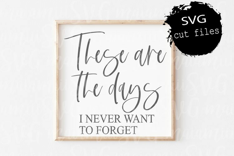 These Are The Days I Never Want To Forget Svg, Farmhouse Svg