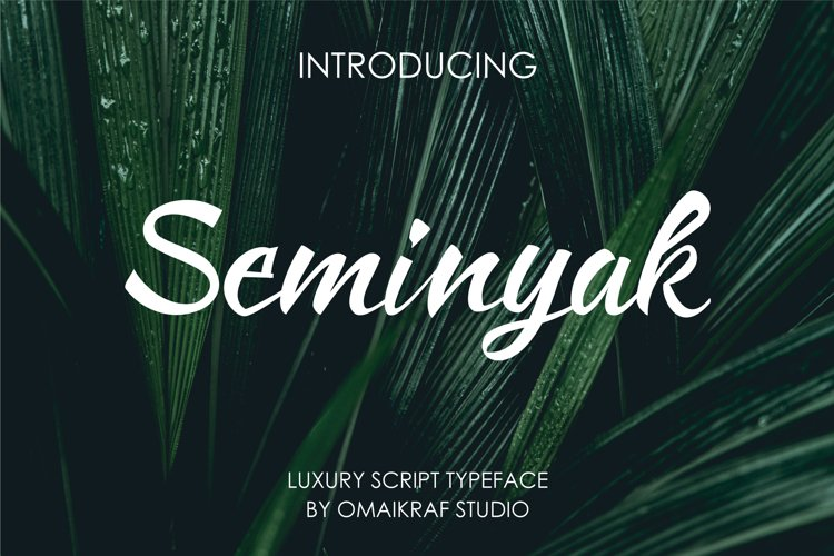 Seminyak example image 1