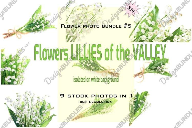 FLOWER PHOTO BUNDLE #5 example image 1