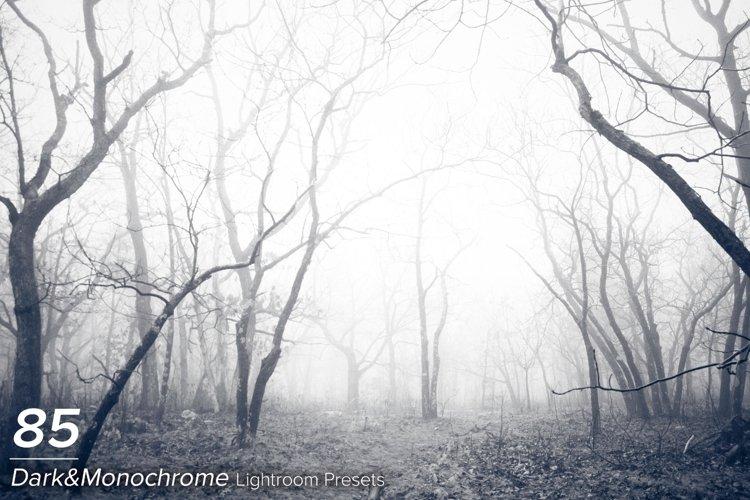 85 Dark & Monochrome Lightroom Presets example image 1