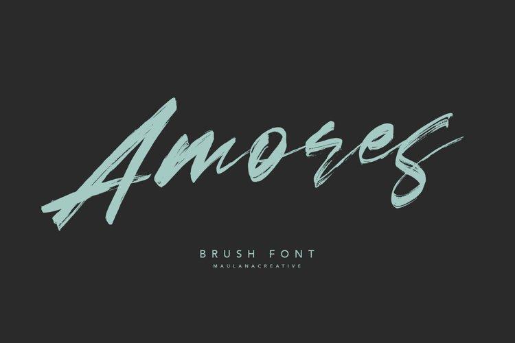 Amores Brush Signature Handmade Font Typeface example image 1