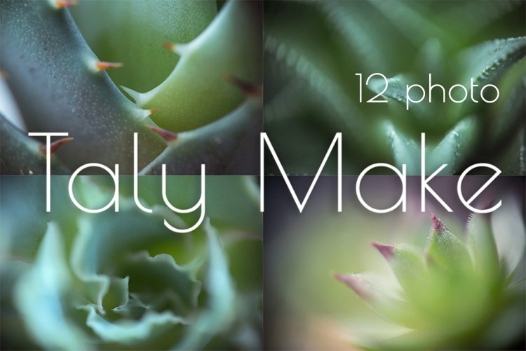 Abstract background of their plants