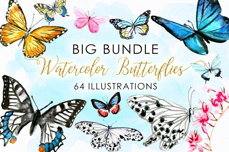 BIG Bundle Watercolor Butterflies