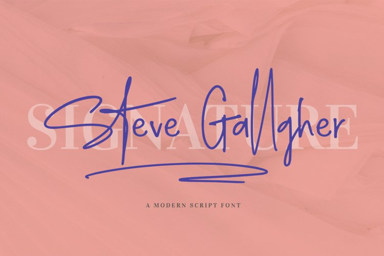 Steve Gallagher example image 1