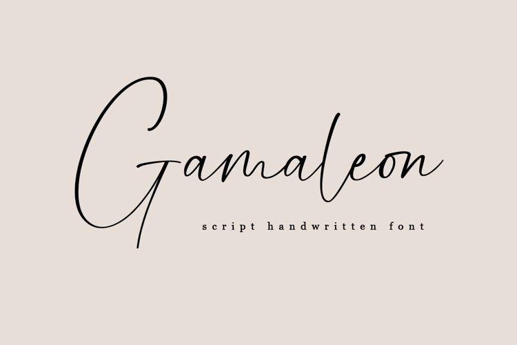 Gamaleon - Script Handwritten Font example image 1