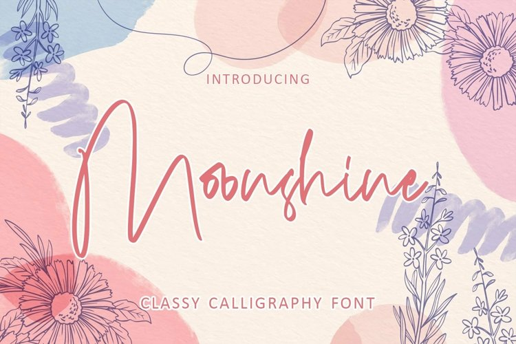 Web Font Moonshine - Classy Calligraphy Font example image 1