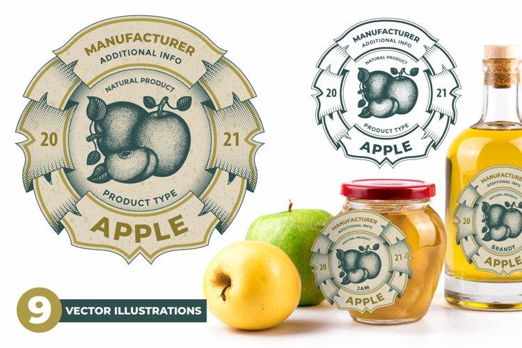 Apples. Hand drawn apple label vector illustrations set.