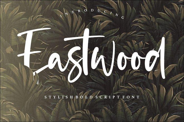 Eastwood Stylish Bold Script Font example image 1