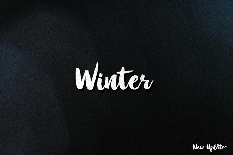 Winter Brush   Special Price!