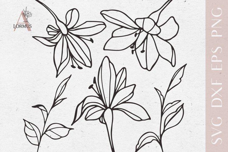 Lily svg bundle, Spring svg files for cricut, Plants svg example image 1