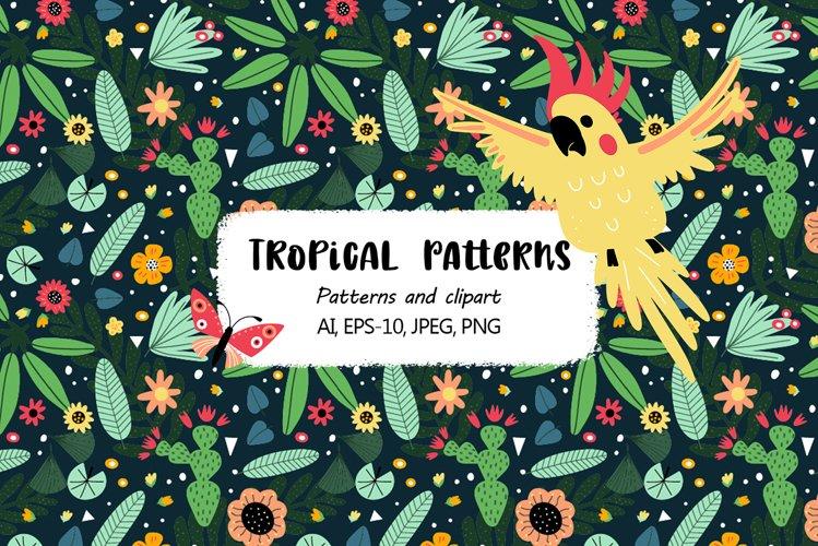 Tropical parrots set example image 1