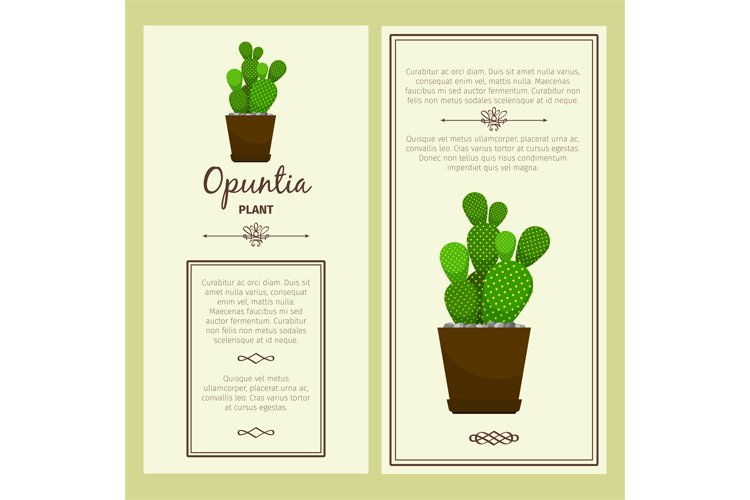 Greeting card with opuntia plant example image 1
