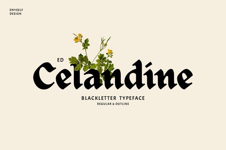 ED Celandine example image 1