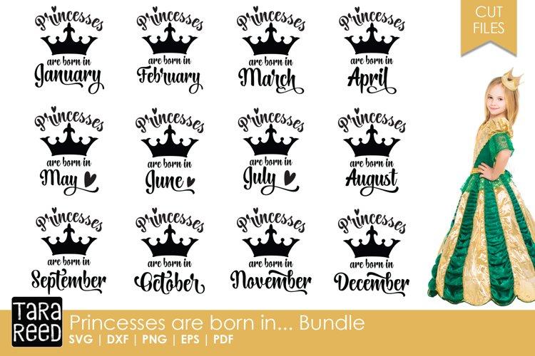 Princess Birthday Month Bundle example image 1