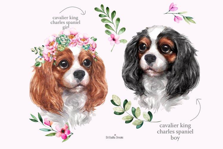 Cavalier King Charles Spaniel portrait, watercolor dog