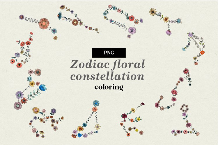 Color Zodiac floral constellation
