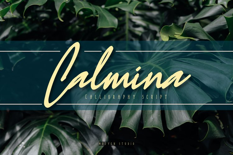 Calmina example image 1