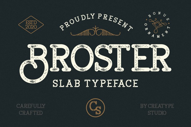 Broster Slab Typeface example image 1